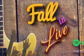 Spotify – Fall in Live