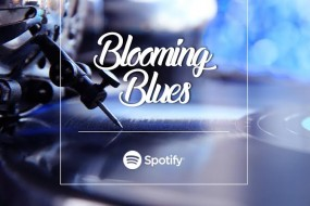 Spotify – Blooming Blossom